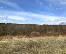 5 acres Bordering Beaver Meadow State Forest Smyrna NY