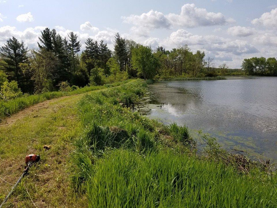 Amazing 40acres with huge pond right next to the Salamonie Reservoir featured image
