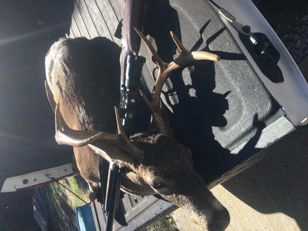 4,000 acre hunting club in South Alabama - Hunting Leases