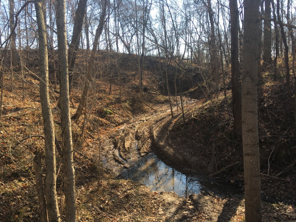 350 Diverse Acres in Greene County Indiana featured image