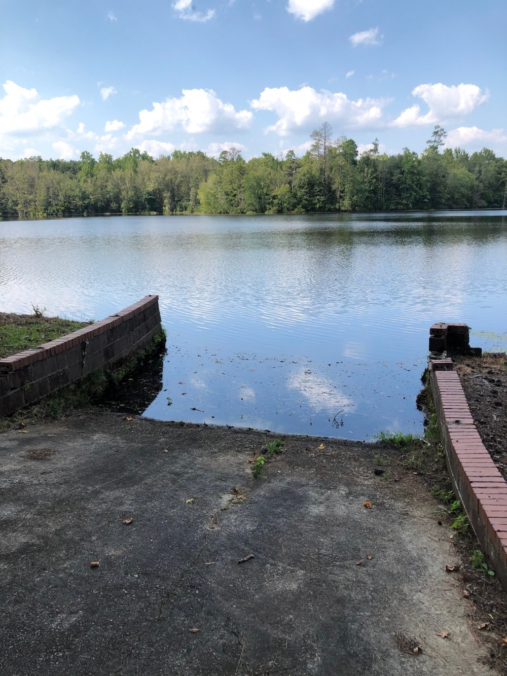 37 acre lake on 134 acres for duck hunting lease! featured image