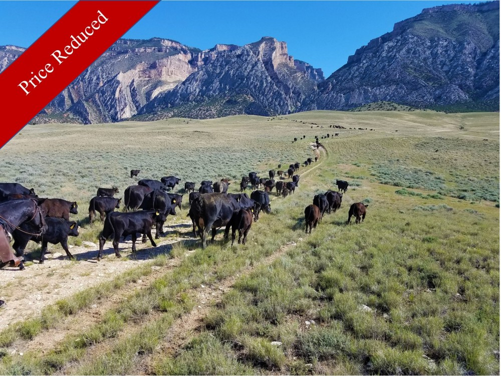 2079 Acre Wyoming Cattle Ranch- PRICE REDUCTION featured image