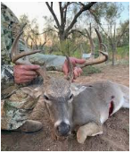 5000 Acres Mule Deer Hunting in Val Verde County, TX featured image