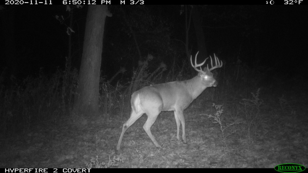 220 acres of mixed farmland & forest high deer density wildlife pond QDM for 25 years featured image