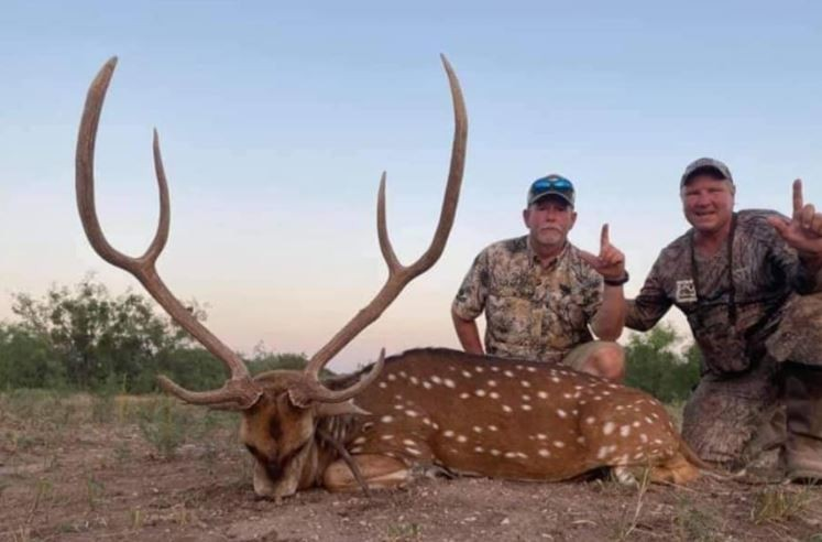 Axis Buck Hunting Available on 1600 Acres in Sonora Texas featured image