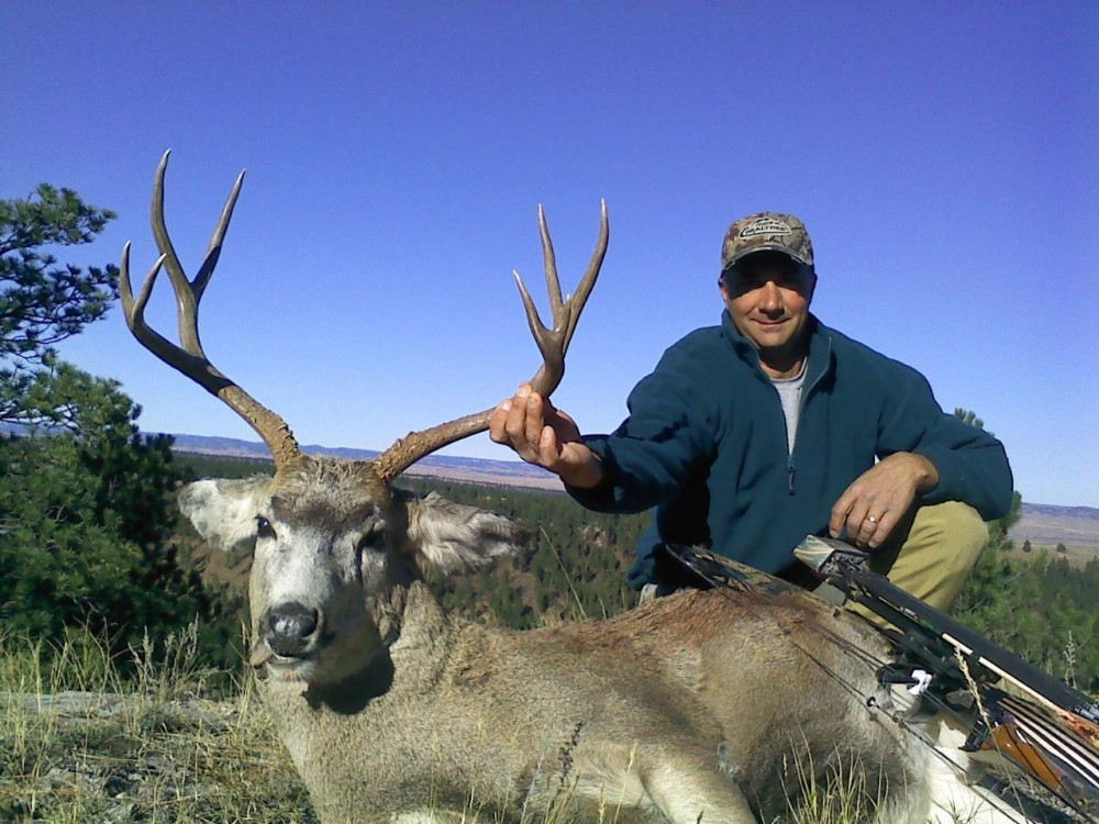NE Wyoming Mule Deer, Whitetail, turkey, Grouse, Elk  with small dry cabin featured image