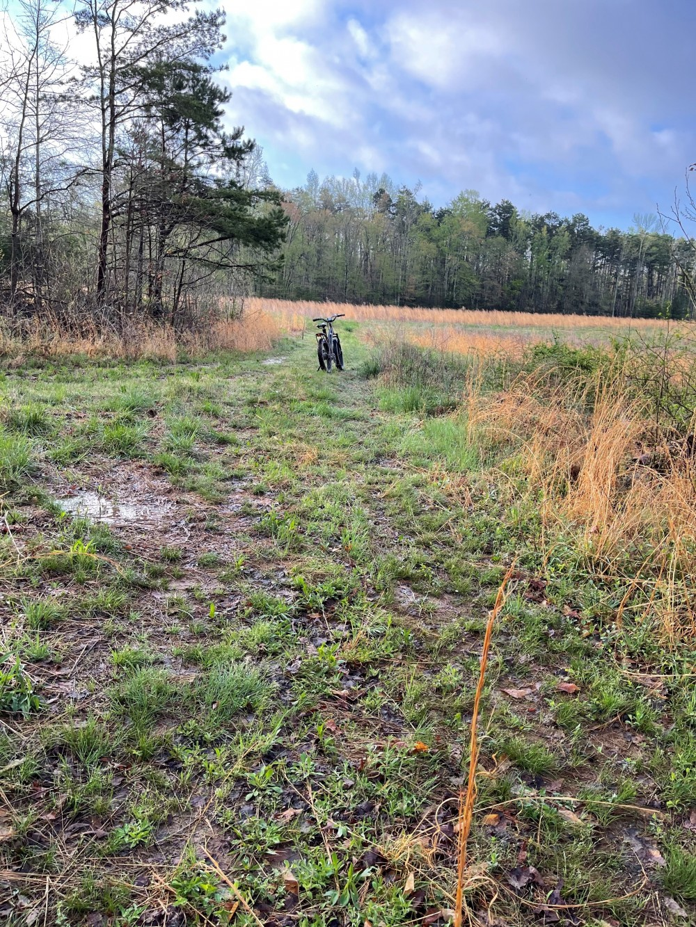 240 acres Year around lease available in Pittsylvania County, VA featured image