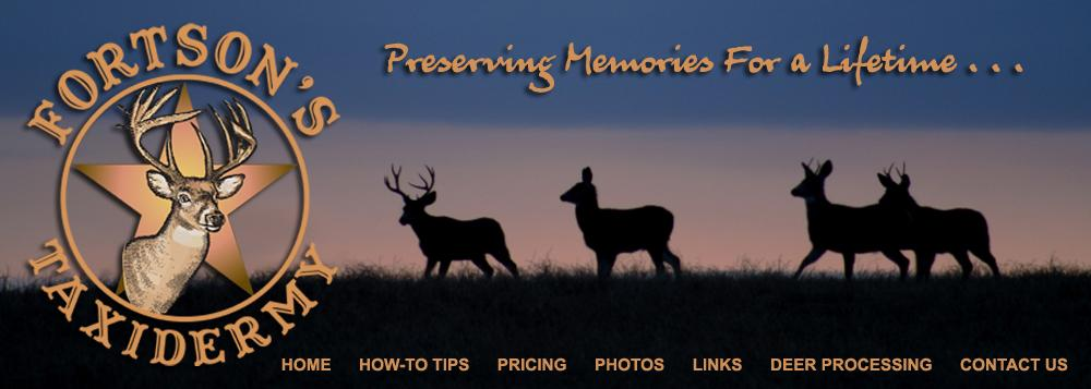 business logo Fortson's Taxidermy
